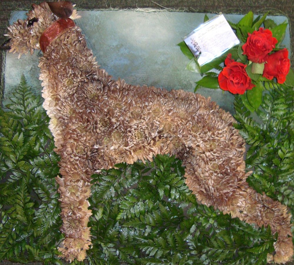 Greyhound floral tribute